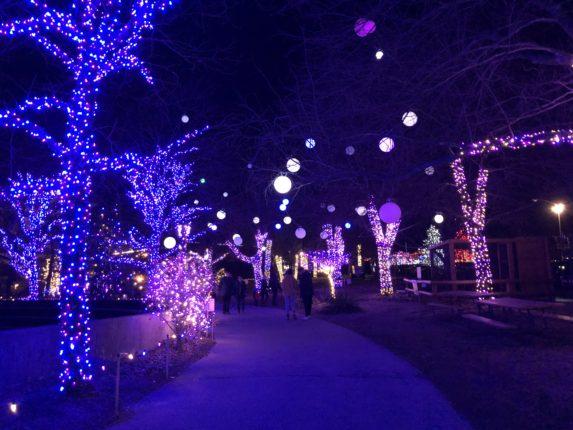 Lehigh Valley Zoo Lights
