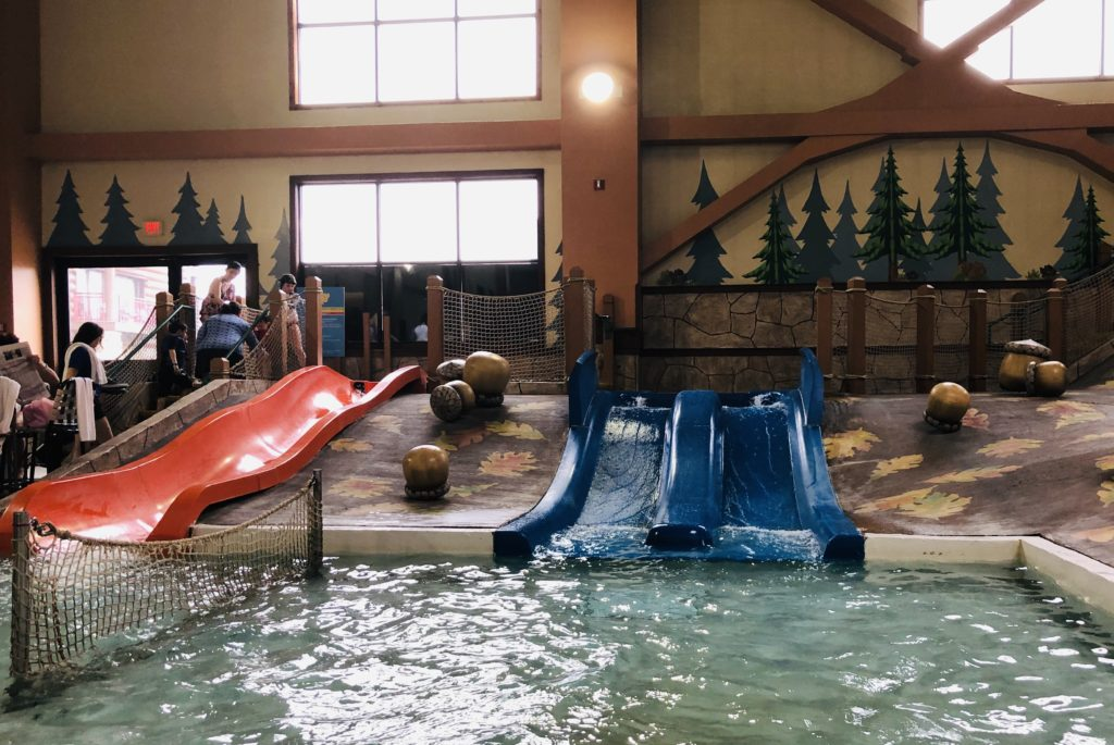Great Wolf Lodge Kids Slides