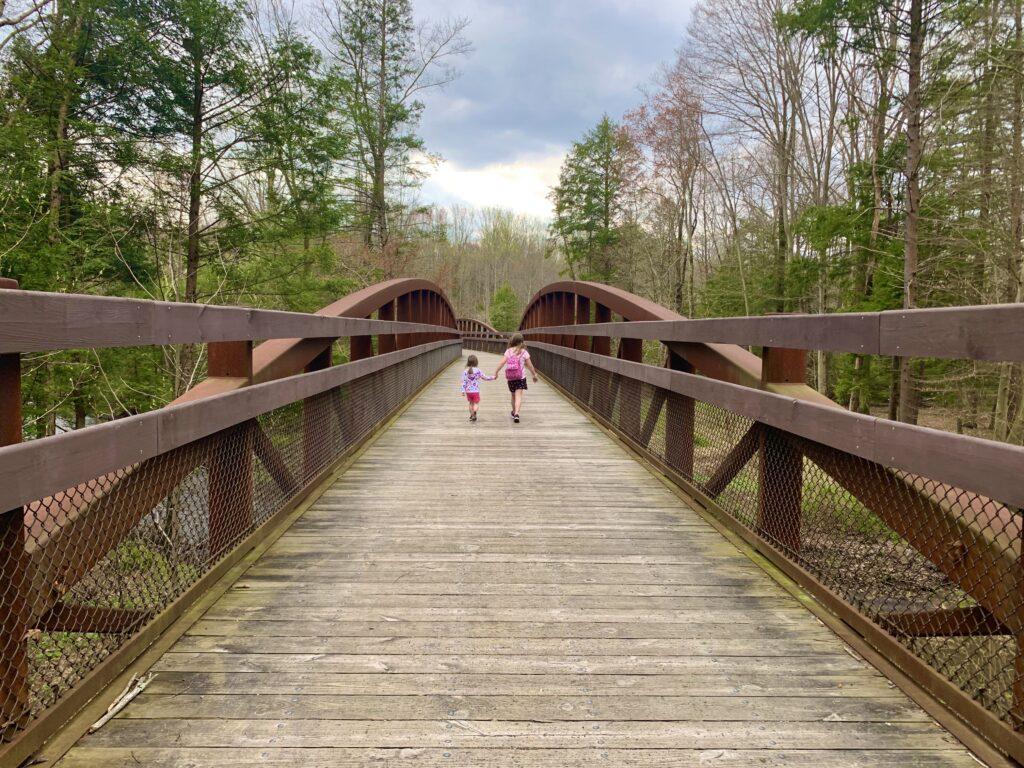 Bear Hole Trail Bridge at Swatara State Park