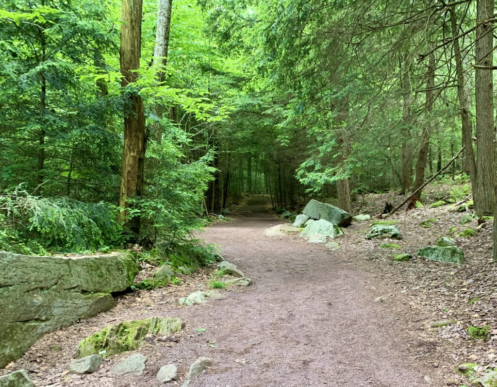 Highland Trail at Ricketts Glen