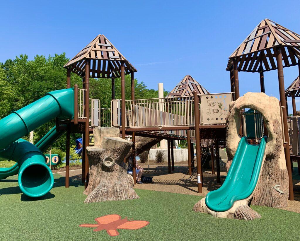 Chessie's Big Backyard Slides