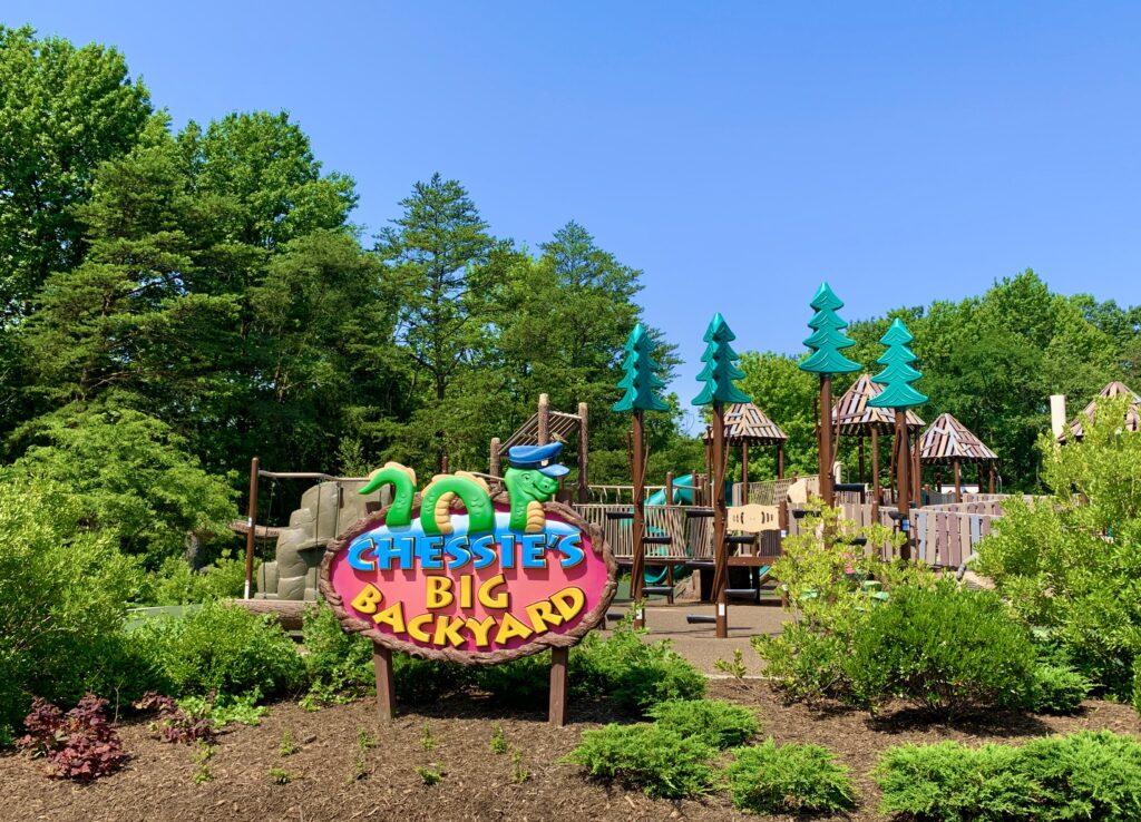Chessie's Big Backyard Playground