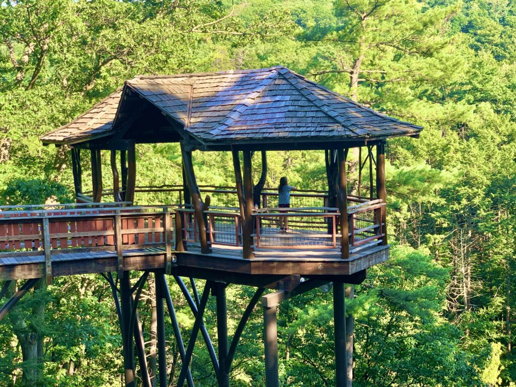 Nay Aug Tree House