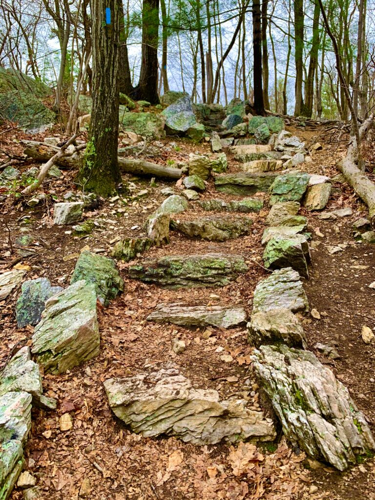 Rock Stairs on Pole Steeple Trail