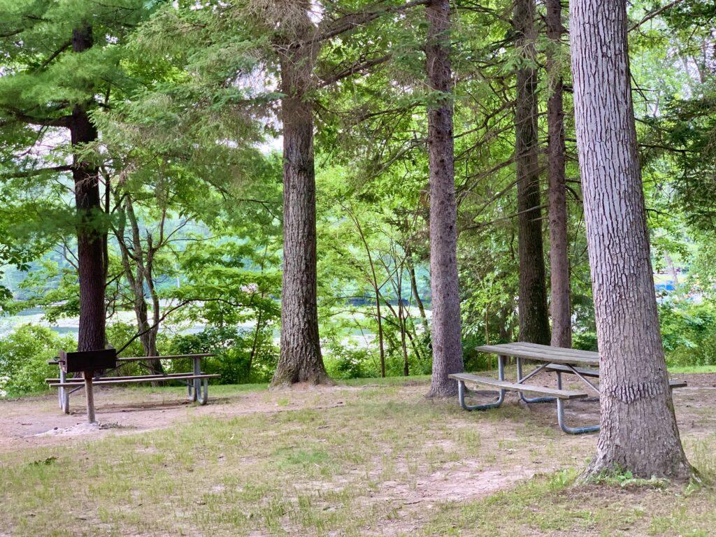 Laurel Lake Picnic Tables