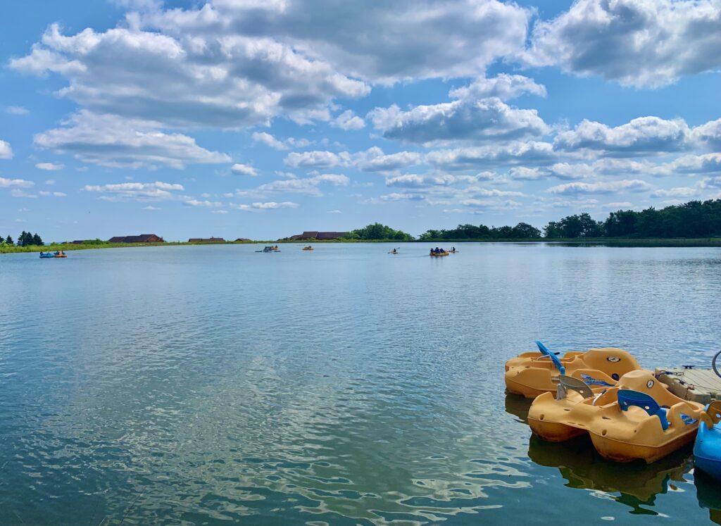 Seven Springs Paddleboats