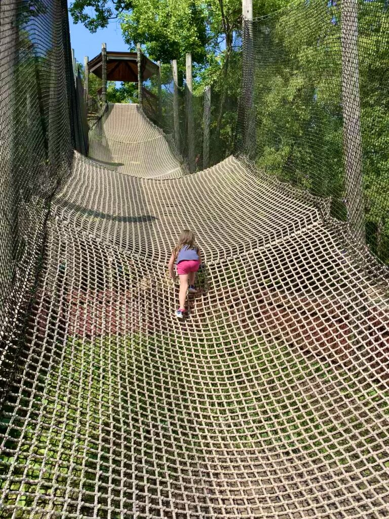 Jumpin Jungle