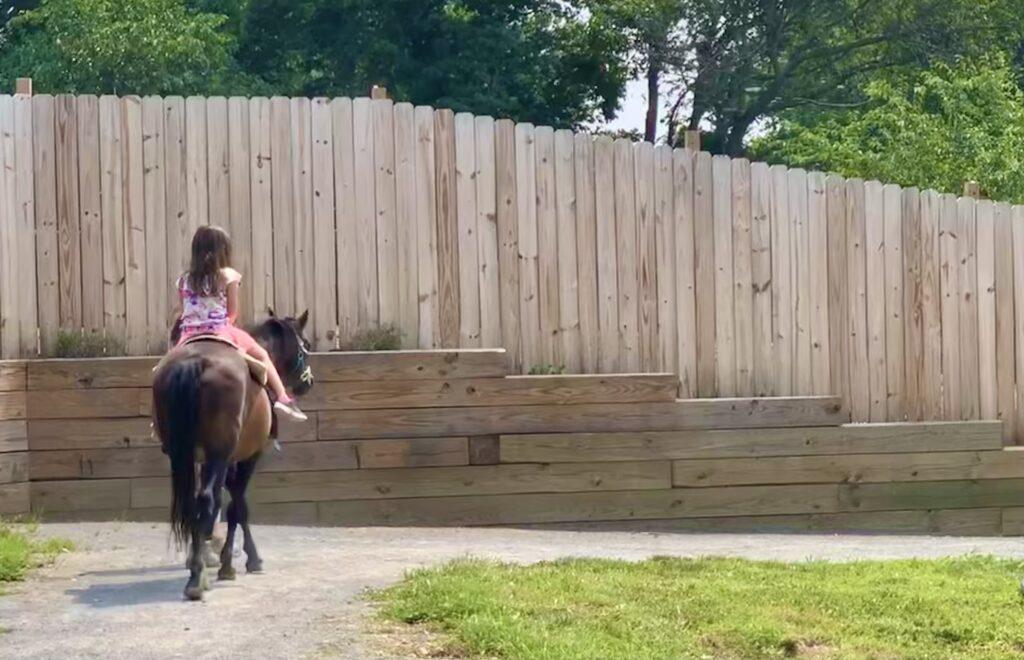 Leesburg Animal Park Pony Ride