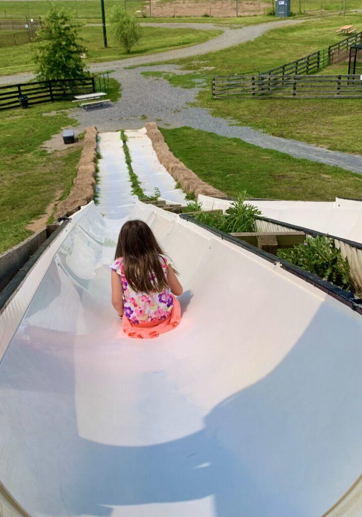 Leesburg Animal Park Slide