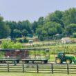 Leesburg Animal Park Wagon