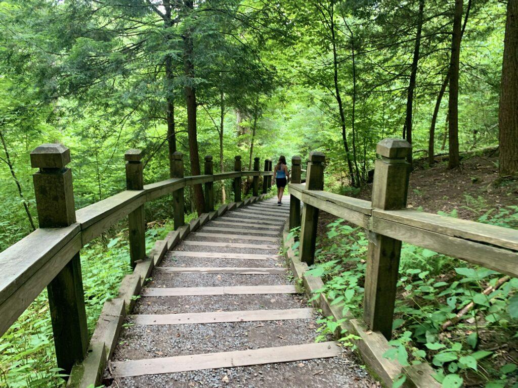 Swallow Falls Canyon Trail Steps