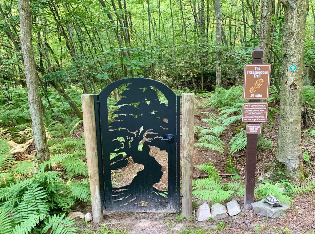Ellas Trail Entrance